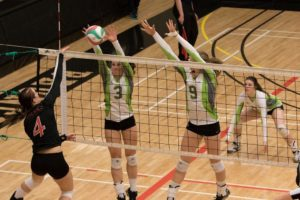volleyball-Red Deer College